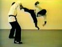 Le singe Bruce Lee